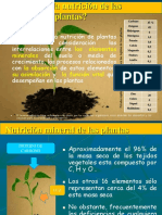Nutricion de La Planta Exponer