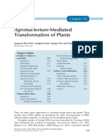 Chapter-14---Agrobacterium-Mediated-Transformation-of_2013_Plant-Tissue-Cult.pdf