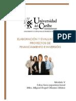 Modulo V. Estructura Organizacional [LNI]