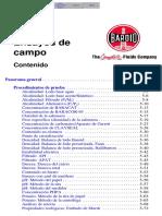 SPch05.PDF
