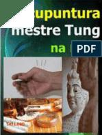 Prof. Dr. Woosen Ur - Acupuntura Mestre Tung Na Mão _ Uma Técnica Milagrosa_ Manual Para Procurar Os Ponto, Localizações e Indicações