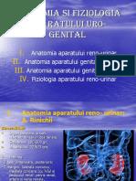 Anatomia Si Fiziologia Aparatului Uro-genital