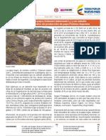 Bol_Insumos_ene_2017.pdf