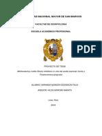 final-proyecto-miranda.docx