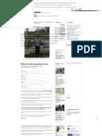 Millonario Robo de Paneles Solares - El Diario de Yucatán