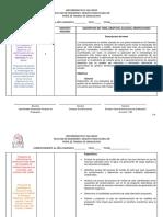 Perfil PML.docx