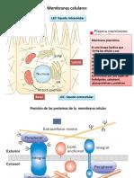 Biomembranas