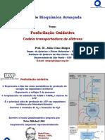 Aula21BioqAvan_FosforilaçãoOxidativa_CTE.pdf