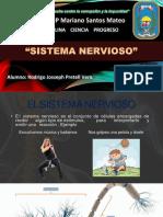 Sistema Nervioso - 2019