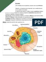 Psiconeurología (resumen)