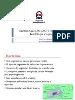 C2 Clasificación Bacteriana I