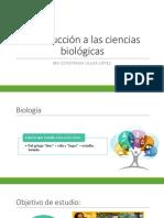 Portafolio Obesidad Infantil PDF