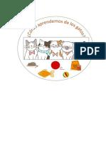 logo gato.docx
