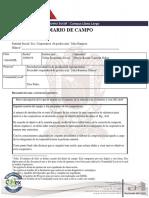 Ejemplo Diario de Campo AEES2