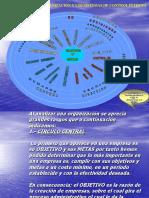 Analisis de La Org. de Una Emp. y Control Interno