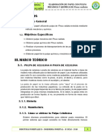 INFORME PULPA - copia.docx
