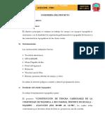 INGENIERIA DE PROYECTO.docx