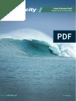 guia turismo aricasurf.pdf