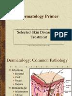 Dermatology Primer[1]