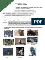 Guía Clase investigacion animal 5°