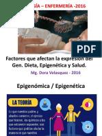 Epigenetica La Esencia Del Cambio