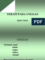 UNGGAS 1
