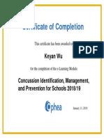 concussion identification certificate