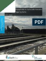 MScThesis_StefanieStubbe_FullScale_Civil.pdf