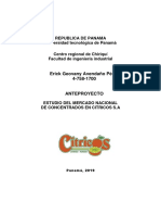 anteproyecto citricos s.a.docx