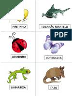 Fichas de Animais