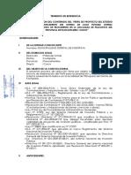 TDR SANEAMIENTO CUSCO2.pdf