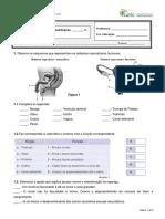 311329768-teste6-6A.docx