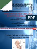 Infeccionenviasurinarias Luisfernando Guillengarcia 120517182245 Phpapp02