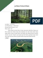 5 Negara Dengan Hutan Terluas Di Dunia