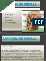 pptdeformidadesderodillaterminado1-140714124511-phpapp01.pptx