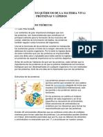 Proteinas y Lipidos - Informe