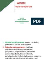 mg4-ZPT-PENGANTAR.pptx