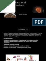 Efectos Del Tabaco