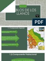 Pueblos de Los Llanos Exposicion (3)