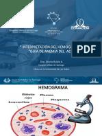 hemograma.pdf