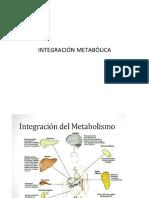 CLASE 25 INTEGRACIÓN METABOLICA.pdf