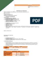 Planeación de Revisoria Fiscal Insolab Sas