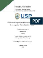 Evaluacion de las patologias de la Av. Argentina - Nuevo Chimbote - Santa-ilovepdf-compressed.pdf