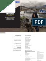 10 Carga de enfermedad ambiental en Colombia.pdf