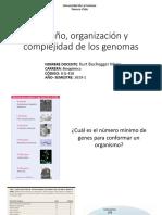 Clase 2. Tamaño, organización y complejidad de los genomas 2019.pdf