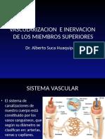 8 Vascularizacion e Inervacion Mmss