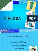 DOC DE CIRUGIAS.pdf