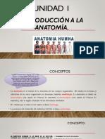 principios de anatomia.pptx