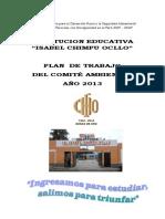 PLAN_CAE_ICHO_2013.docx