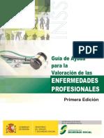 _Guia-ayuda-valoracion-enfermedades-profesionales-INSS2017.pdf